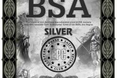 DM2RM-BSA-SILVER