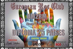 DM2RM-DPT-25
