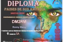 DM2RM-DSA-6